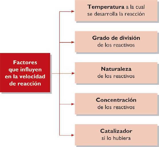 Enumere 4 o 5 factores que pueden afectar la presión arterial