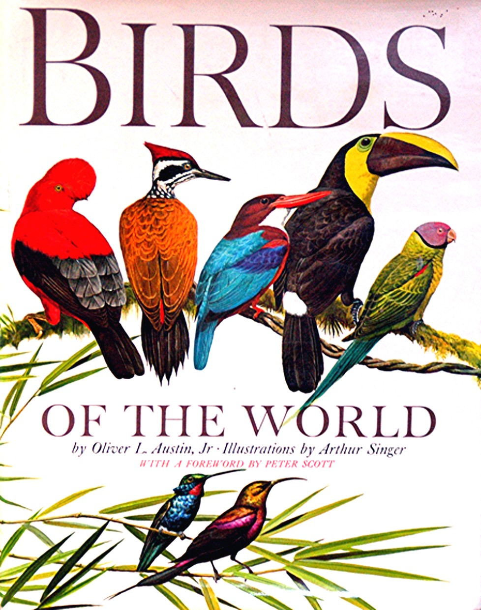 Top 10 books about birds