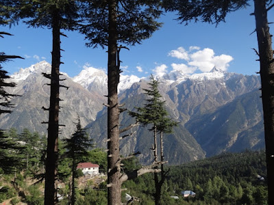 Beautiful Kalpa