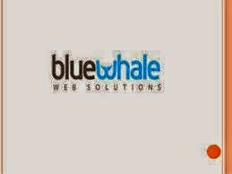 BlueWhale-Solutions-logo