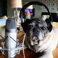 Как создать аудио и вставить на блог