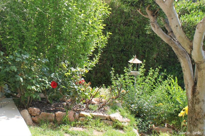 Los rosales esta primavera de 2017 guia de jardin for Jardin los rosales
