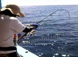 Mancing Ikan Strike Ikan GT Lilin