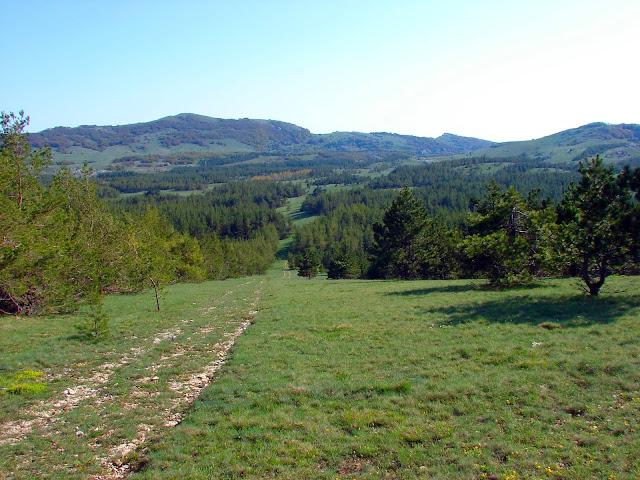 Котловина Беш-Текне. Левее центра - гора Ат-Баш.