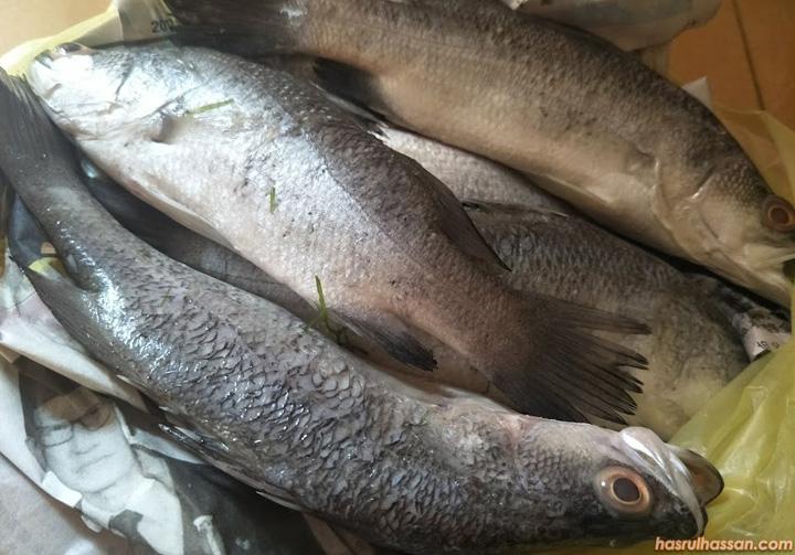 Cara Masak Ikan Siakap Stim