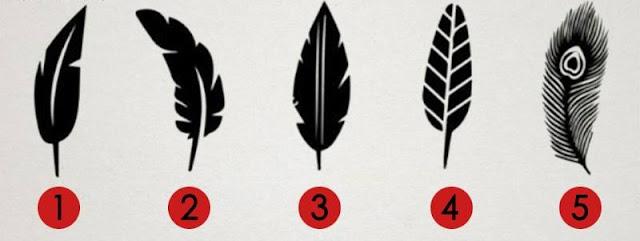 5 pupla të ndryshme