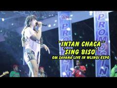 Intan Chaca - Sing Biso