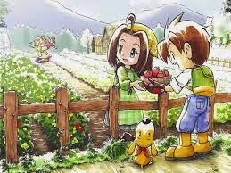 Buku Panduan Harvest Moon A Wonderful Life Special Edition