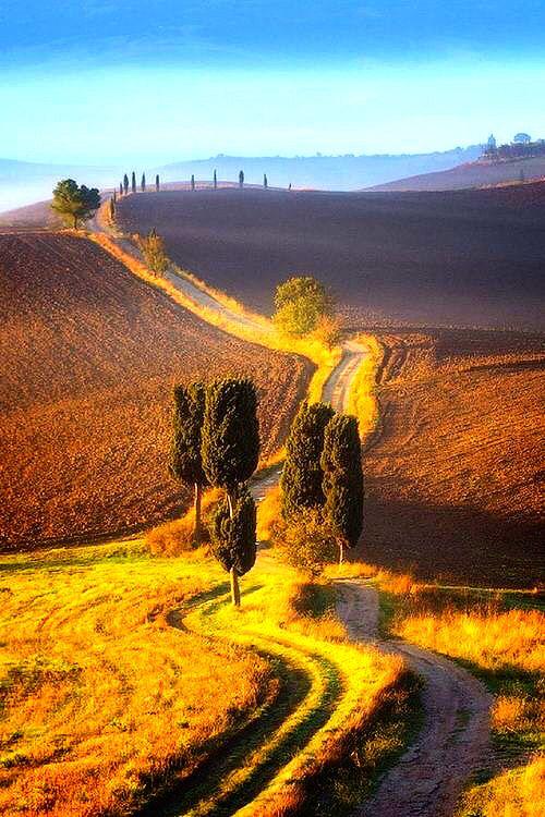 Um longo caminho numa paisagem de serrado com sol brilhante.