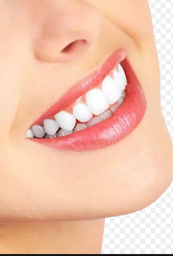 You Can Grow Your Own Teeth in Just 9 Weeks: Say Goodbye Dental Implants