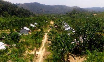 Pembangunan Daerah Transmigrasi