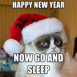 2017 Happy New Year Cat Memes, Funny Pictures To Share