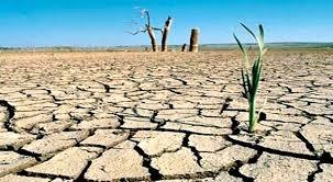 Mueren 11 personas en Kenia por violencia atizada por sequía