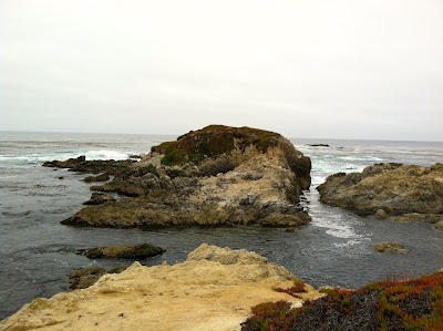 17 Mile Drive Fanshell Overlook