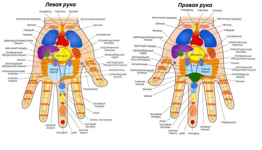 точечный массаж на руках и ногах