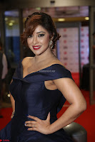 Payal Ghosh aka Harika in Dark Blue Deep Neck Sleeveless Gown at 64th Jio Filmfare Awards South 2017 ~  Exclusive 068.JPG