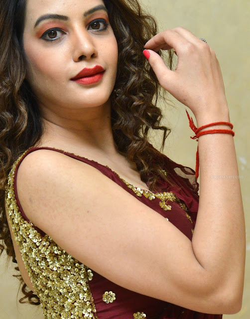 Diksha Panth sexy nude hand for perfect handjob in sleeveless blouse xxx