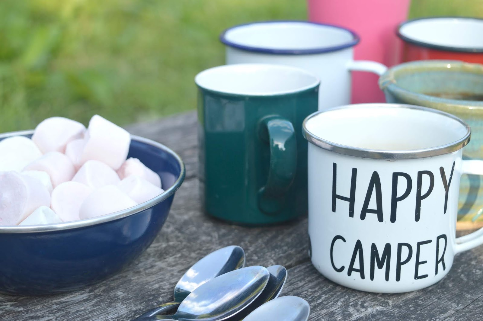 Wild Northumbrian Campsite - Marshmallows