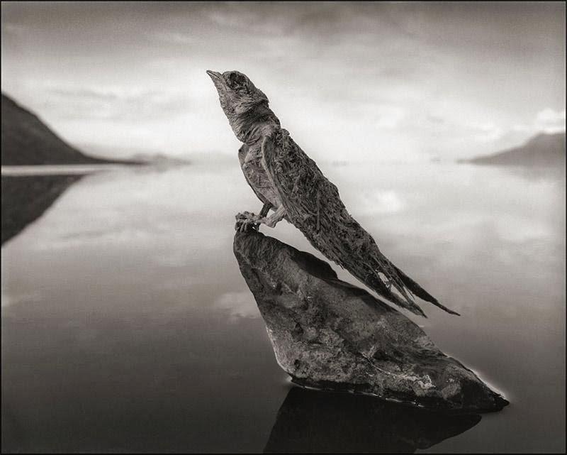 بحيرة الموت فى تنزانيا