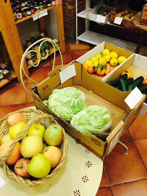 Fitness And Chicness- Eco Eco Shop- Tienda Ecologica-3