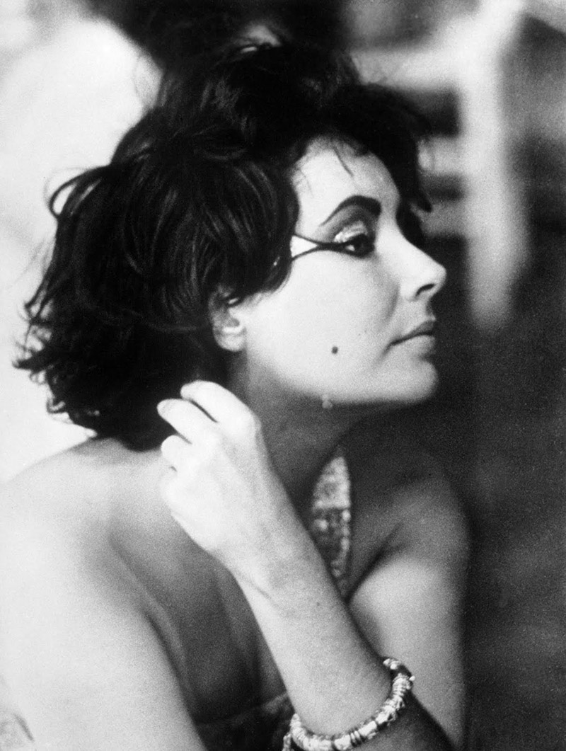 Her Men, Her Movies, Her Diamonds, Her Portraits. The Legacy Of Elizabeth  Taylor. 32 Stunning Photos.   If Itu0027s Hip, Itu0027s Here