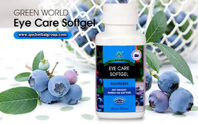 Agen Eye Care Softgel Garut