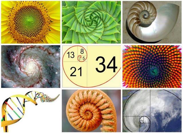 Angka Fibonacci
