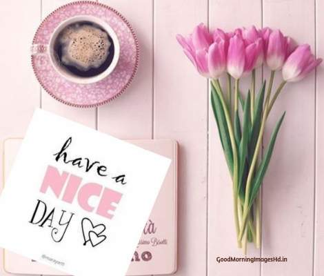 Best coffee good morning images with pink rose