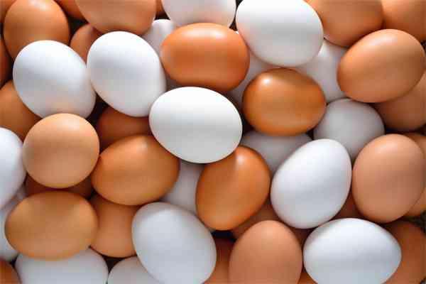 Resep Olahan Telur Paling Populer