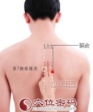 膈俞穴位 | 膈俞穴痛位置 - 穴道按摩經絡圖解 | Source:xueweitu.iiyun.com
