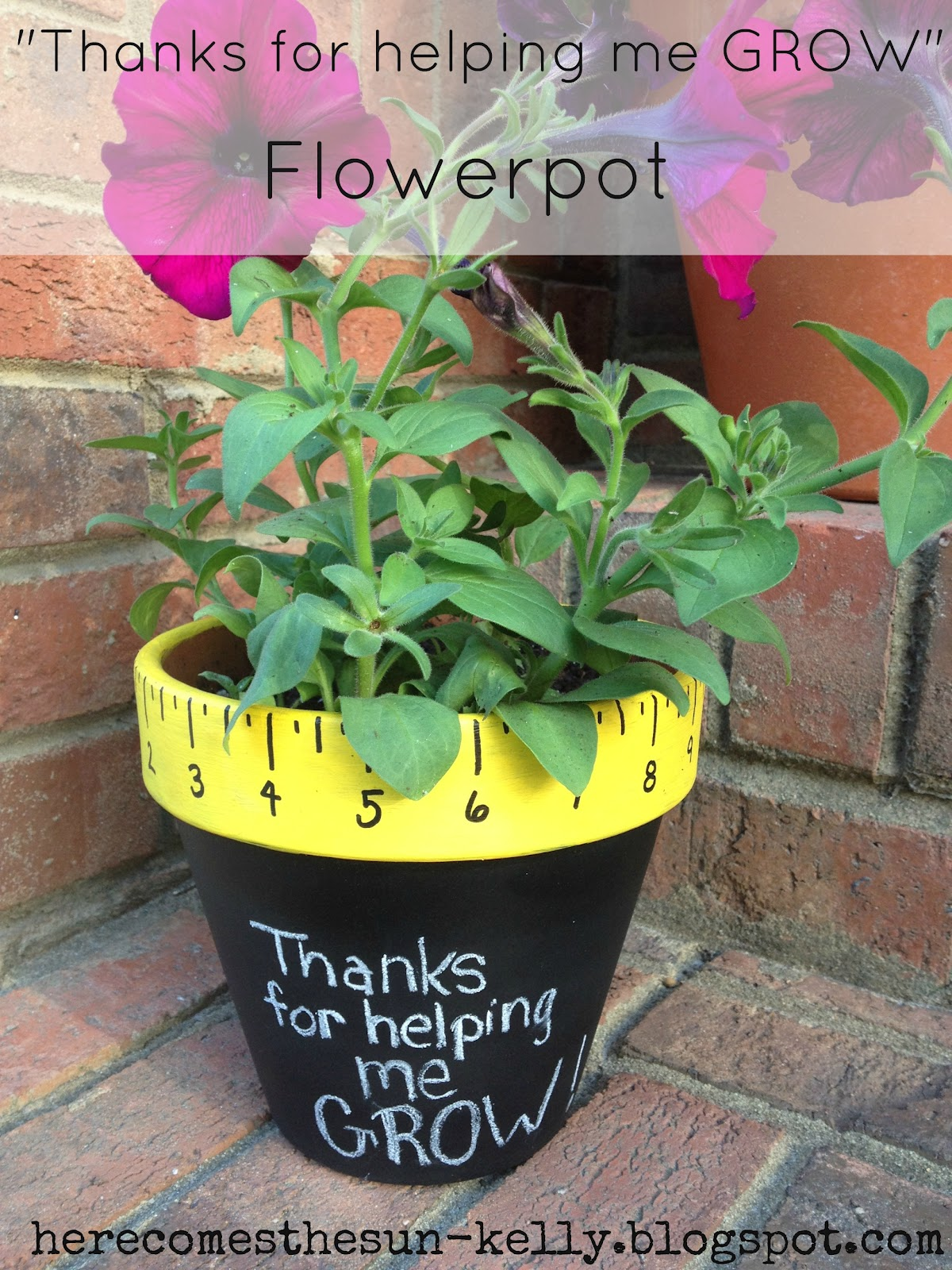 thanks for helping me grow flowerpot here comes the sun