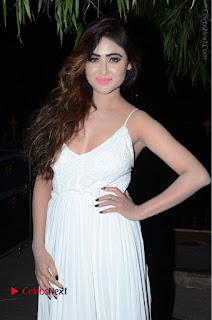Telugu Actress Model Sony Charishta Pos in White Long Dress at Nanna Nenu Na Boyfriends Audio Launch  0071.JPG