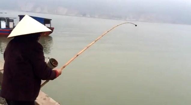 Kinh nghiệm câu cá vào mùa đông