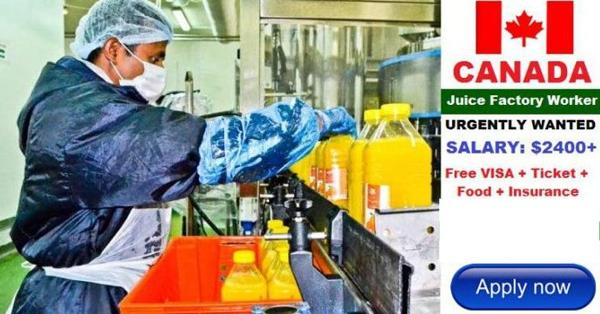 Juice Factory Jobs in CANADA with Work Permit