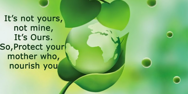 quotes on environment conservation