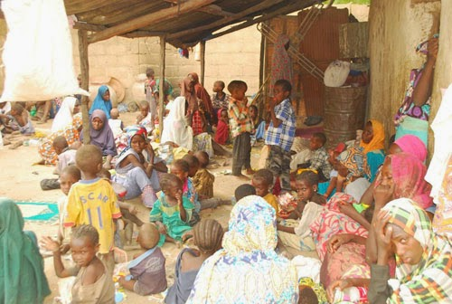 More women and children freed from Sambisa Forest
