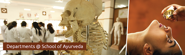 Ayurveda+Departments
