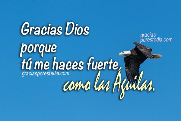 Frases para dar gracias a Dios, oración de la mañana con agradecimiento al Señor