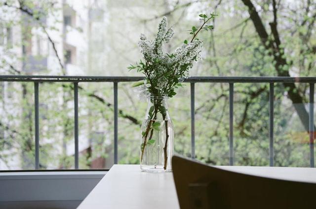 menyiram tanaman hias dengan rutin