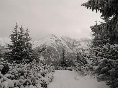 Droga do Hali Gąsienicowej zimą