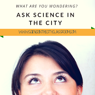 A chance for Q&A and background info about Science in the City