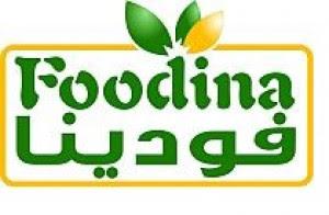شركة الاسماعيلية للصناعات الغذائية ( فودينا )