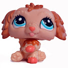 Littlest Pet Shop 3-pack Scenery Labradoodle (#2425) Pet