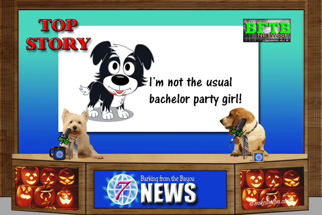 BFTB NETWoof Dog News Top Story ~ Bachelor Party Pups