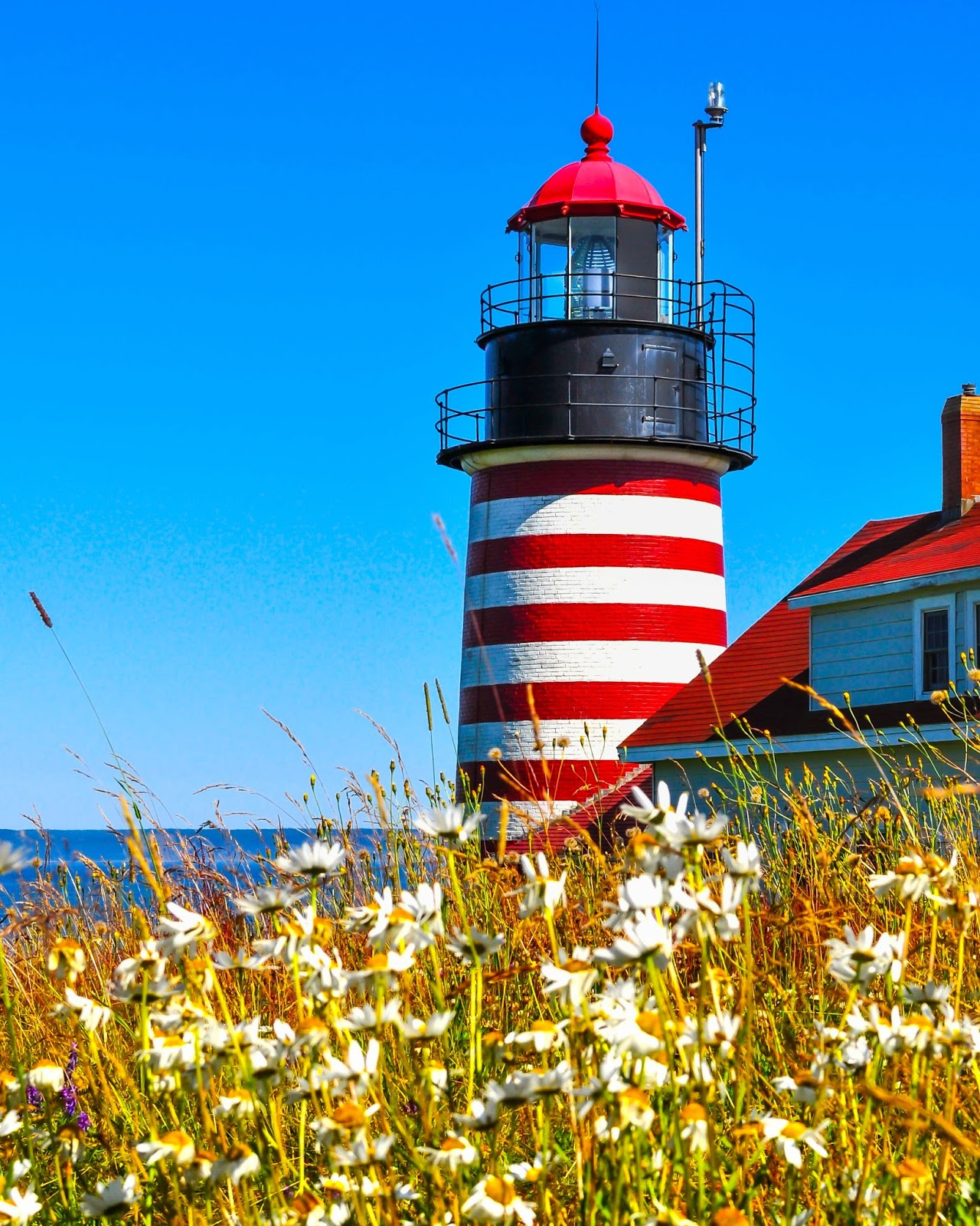 Westlight House: Maine Lighthouses And Beyond: West Quoddy Head Lighthouse