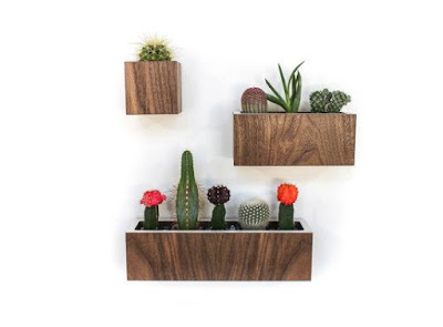 Walnut wood Wall Planters