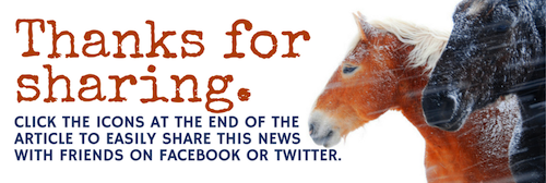 Hoofcare and Lameness social media sharing thanks