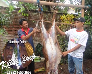 Catering Kambing Guling di Lembang Bandung