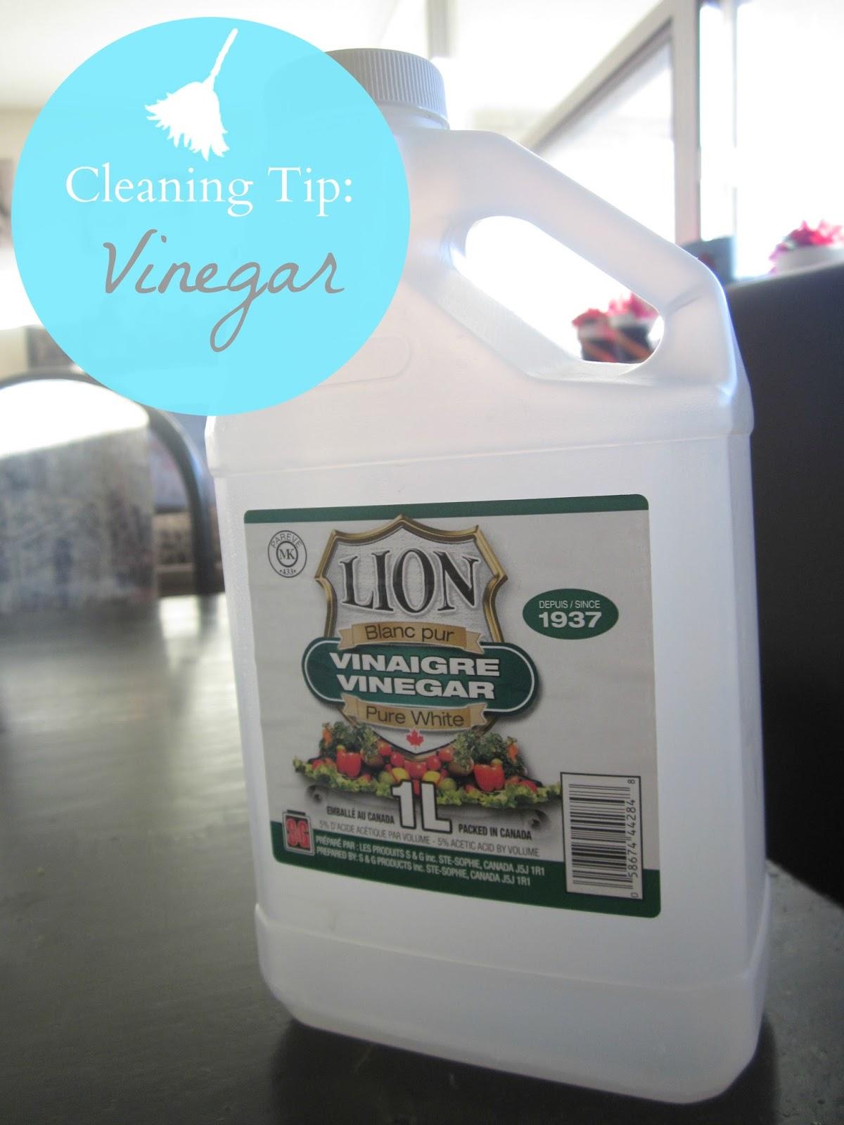cleaning tip: vinegar