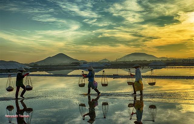 The salt fields near Van Phong Bay, Khanh Hoa province 7